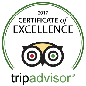 MCHS-TripAdvisor-Certificate-Excellence-2016